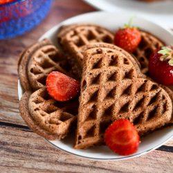 cocoa waffle recipe